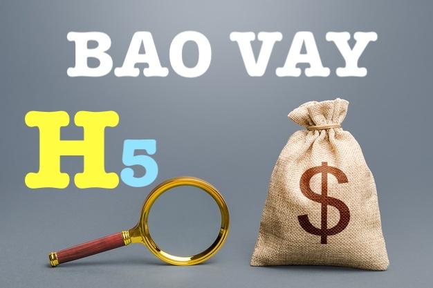 H5 BAO vay